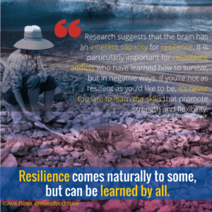 resilience-2